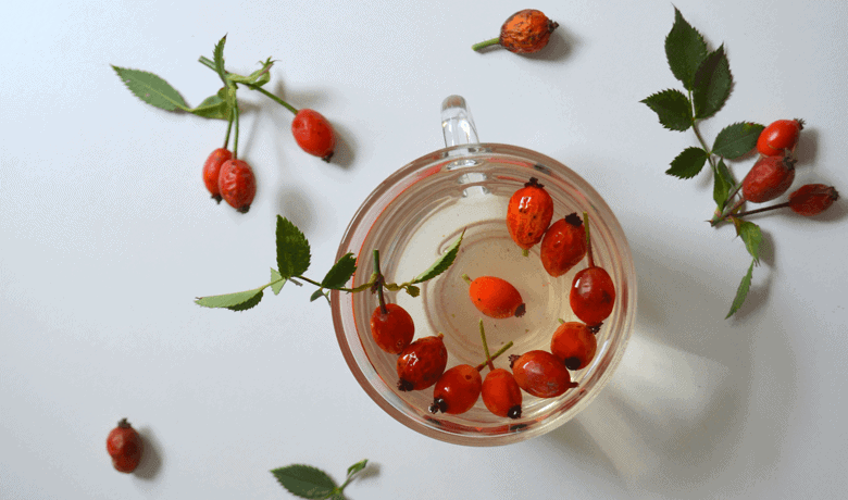 rosehip oil and acne